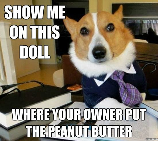 lawyer-dog-peanut-butter