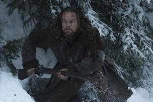Hunting Fitzgerald